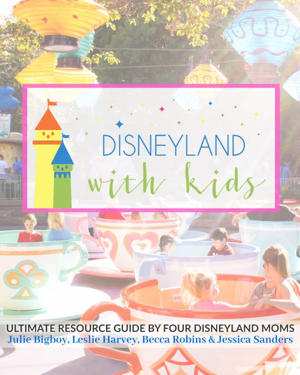 Disneyland With Kids eBook